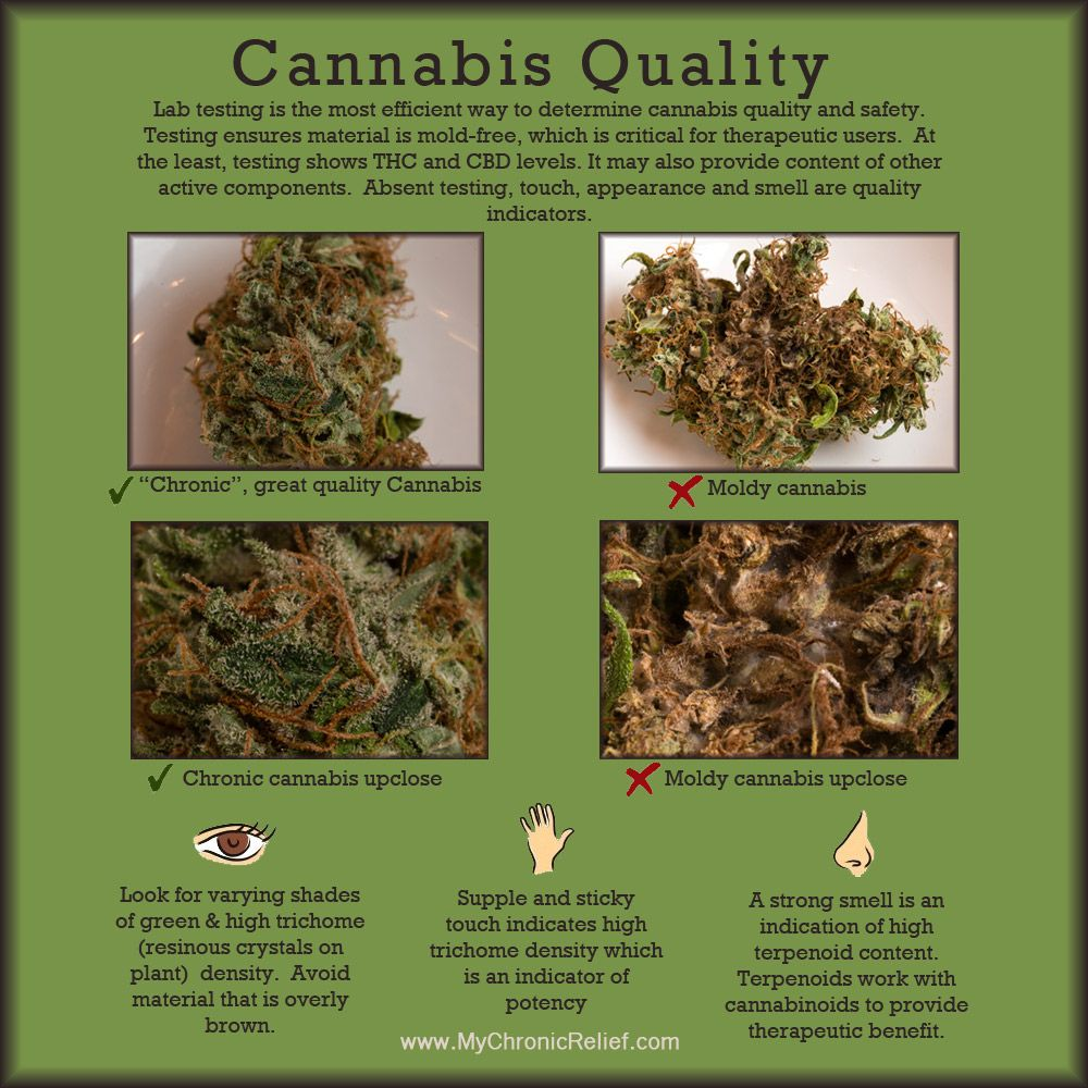 Lab testing is the most efficient way to determine cannabis ...