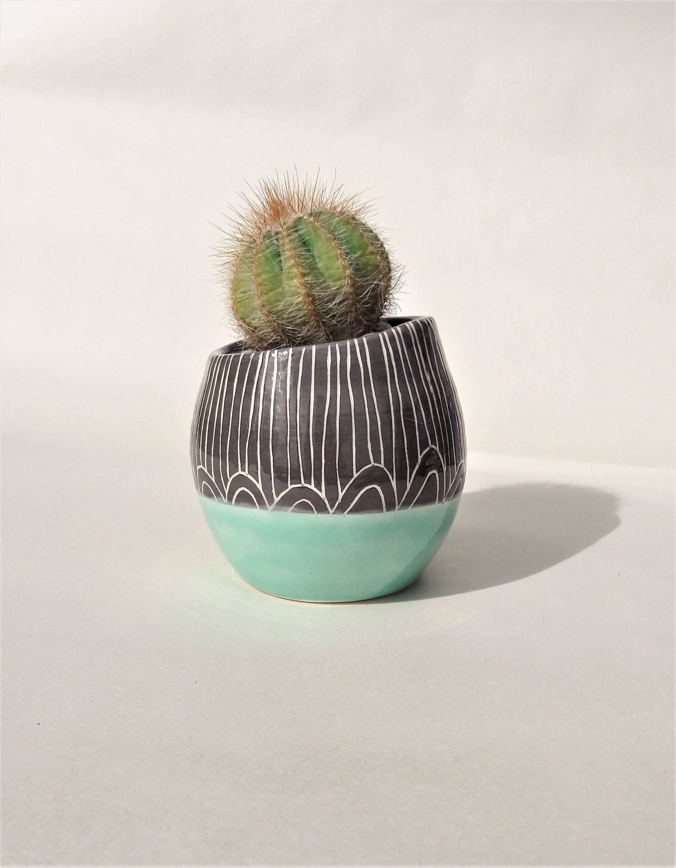 Cute cactus pot succulent pot cactus planter plant