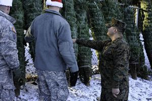 Bringing Holiday Cheer to Troops