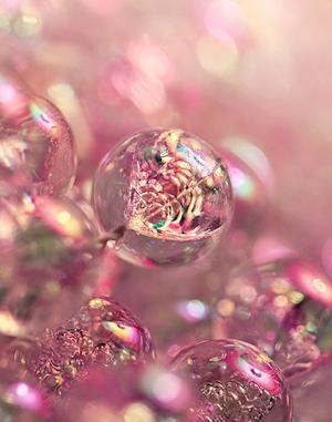 adorable-bubbles-colors-cute-Favim.com-603911