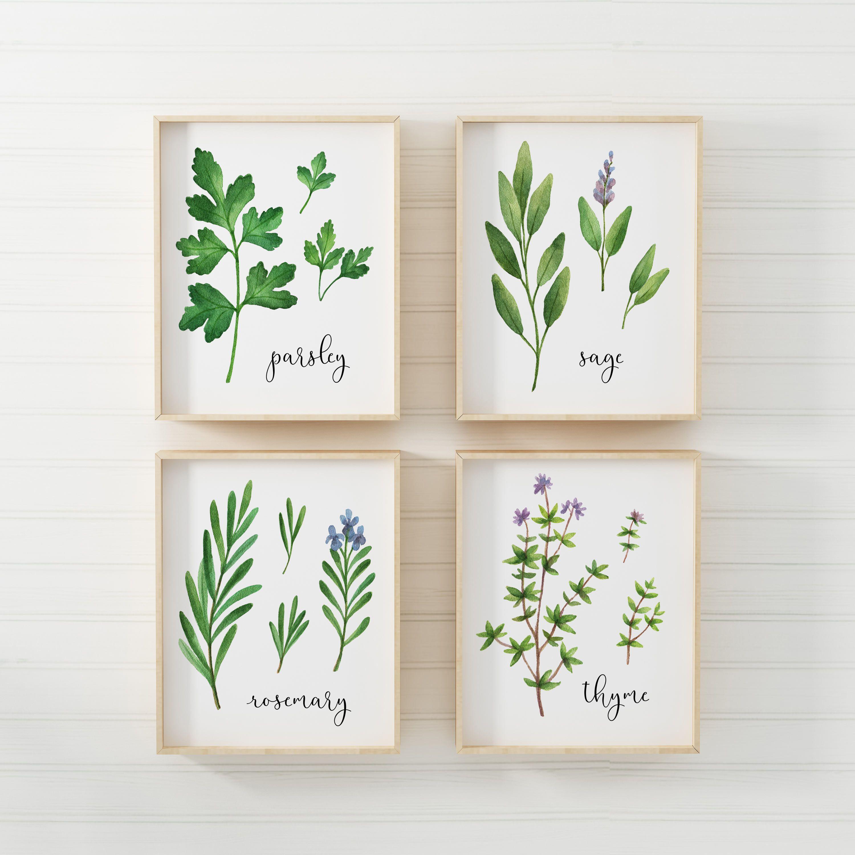 Herb Printable Herbs Print Set Of 4 Printables Parsley Sage