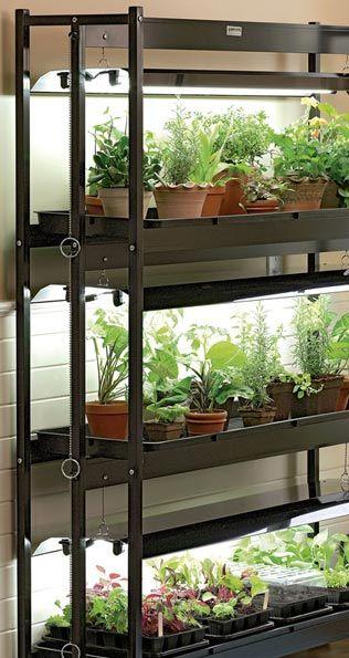 Grow Lights u0026 Stands & Grow Lights u0026 Stands | gardening | Pinterest | Grow lights Raised ... azcodes.com