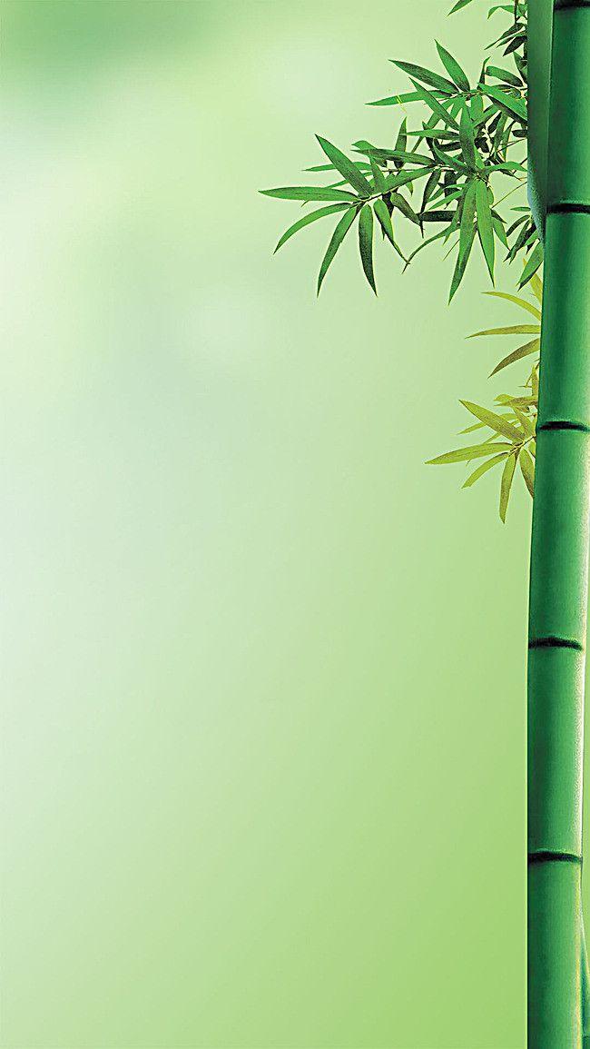 Verde, Il Bambù, Foglie Di Bambù Immagini di sfondo, Il Sogno Di Smeraldo Di Foglie Di Bambù H5 Contesto Sfondo fotografico PNG e vettori gratuiti