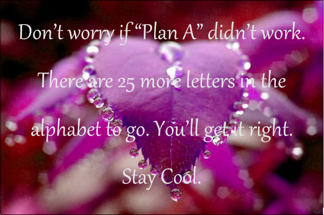 It's okay if things don't go your way the first time. You can try again! Stay awesome.  Quote #1