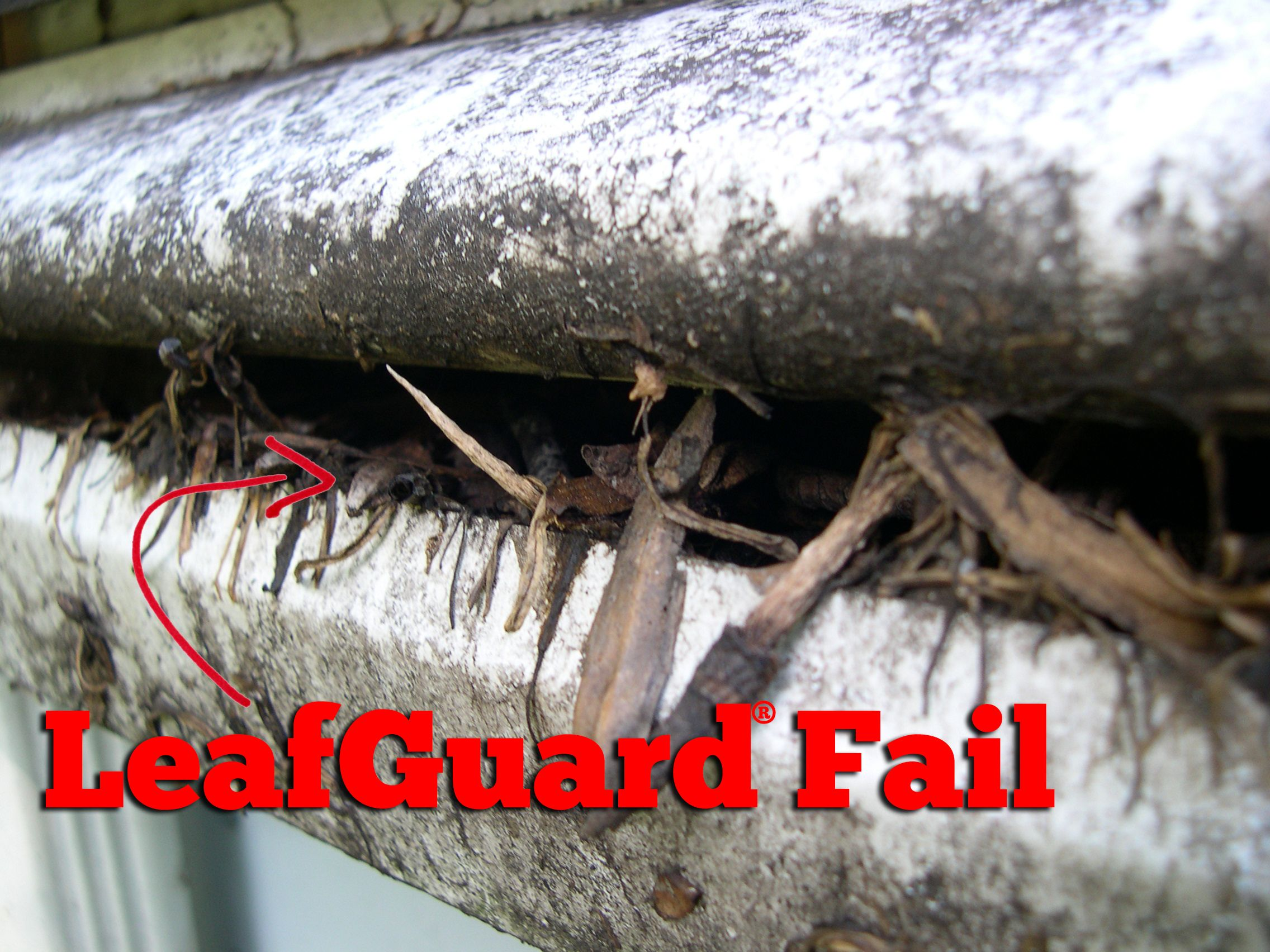 Mold Dirt Leaves Those Are Three Things That You Do Not Want In Your Gutters Avoid The Hassle Of Having To Cleaning Gutters Gutter Protection Gutter Guard