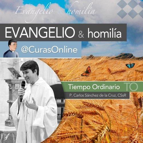 Evangelio y Homilía del Lunes 17 de octubre de 2016, memoria de san Ignacio de Antioquía. Por el P. Carlos Sánchez de la Cruz, redentorista.