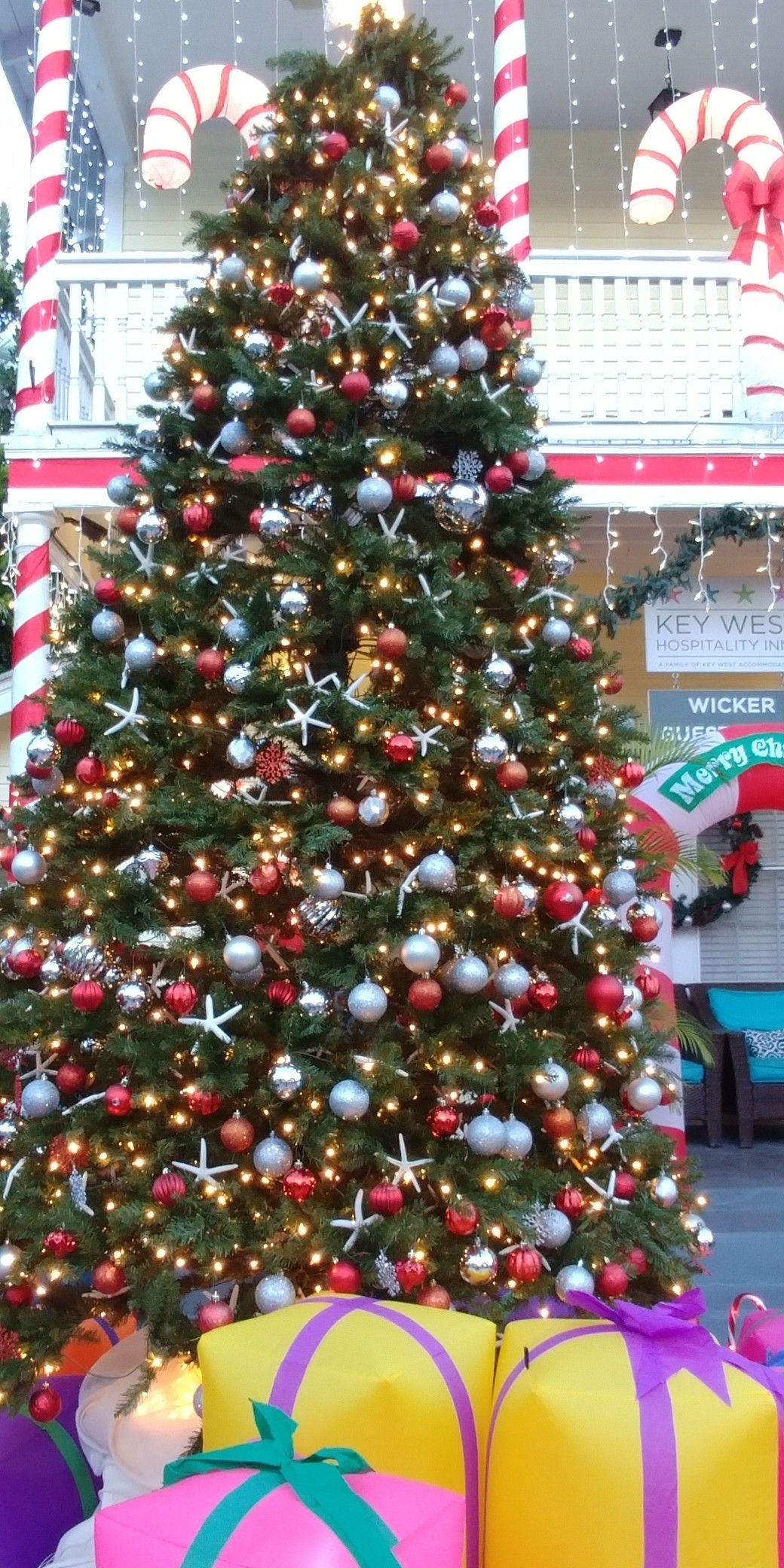 Coastal Christmas Tree . Key West Florida. Beach Decor. Starfish ...