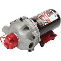 NorthStar NSQ Series 12V On-Demand Diaphragm Pump — 5 5 GPM @ 60 PSI