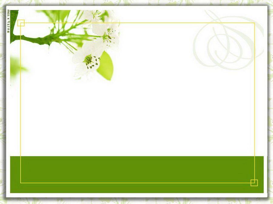 blank wedding card designs