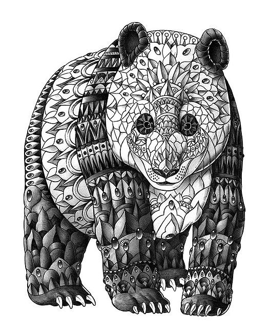 panda zentangle coloring pages colouring detailed