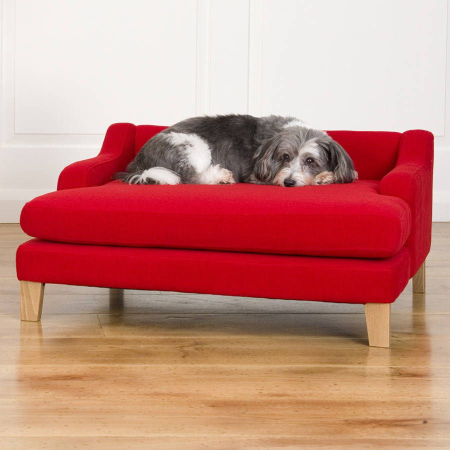 small dog furniture. With A More Contemporary Take On The Classic English Wingback Chair And Choice Of Beautiful · ChairsSmall DogsDog Small Dog Furniture U