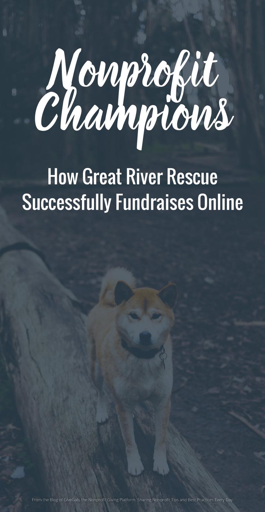 Nonprofit Champion Great River Rescue No kill animal