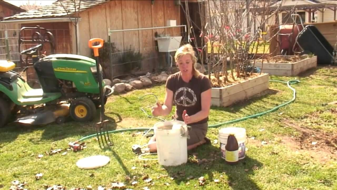How To Make Compost Tea Garden Compost Hydroponic Gardening Organic Gardening Tips