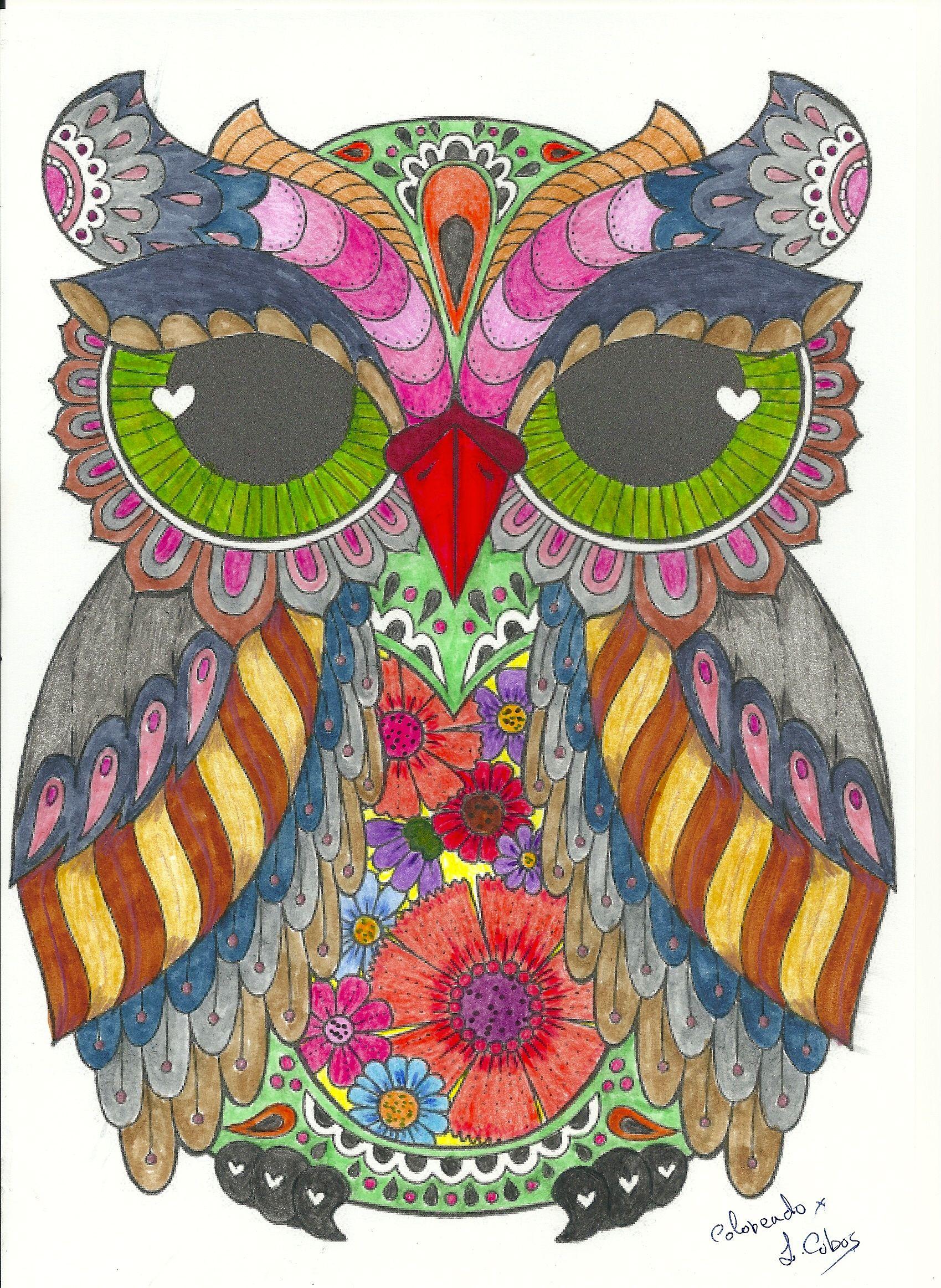 Buho Nº 1 Owl Artwork Owls Drawing Coloring Book Art