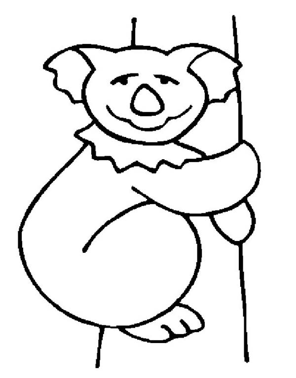 Koala Bear Drawing Coloring Page Color Luna Bear Drawing Bear Coloring Pages Koala Bear