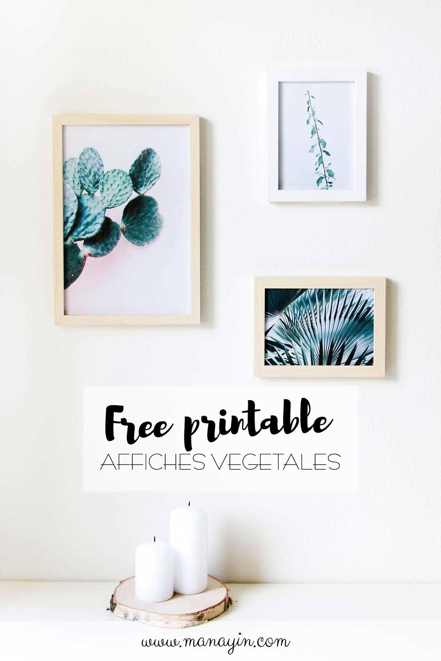 Deco Murale Vegetale 3 Affiches A Imprimer Gratuites Manayin Deco Murale Art Mural Imprimable Gratuit Idee Deco Gratuite