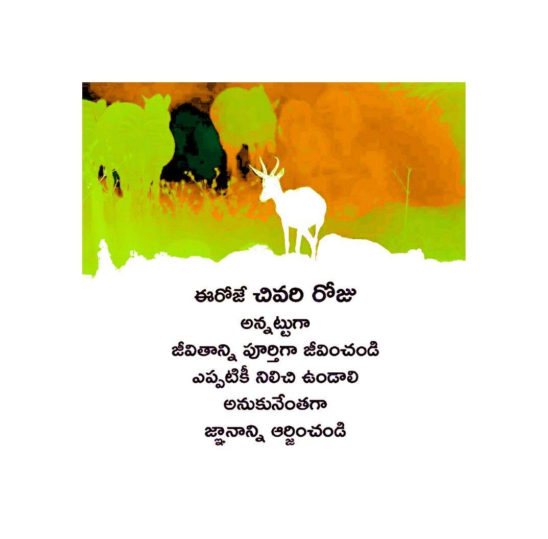 Pin By Vasu, Chittoor On Telugu, Vasu, Chittoor