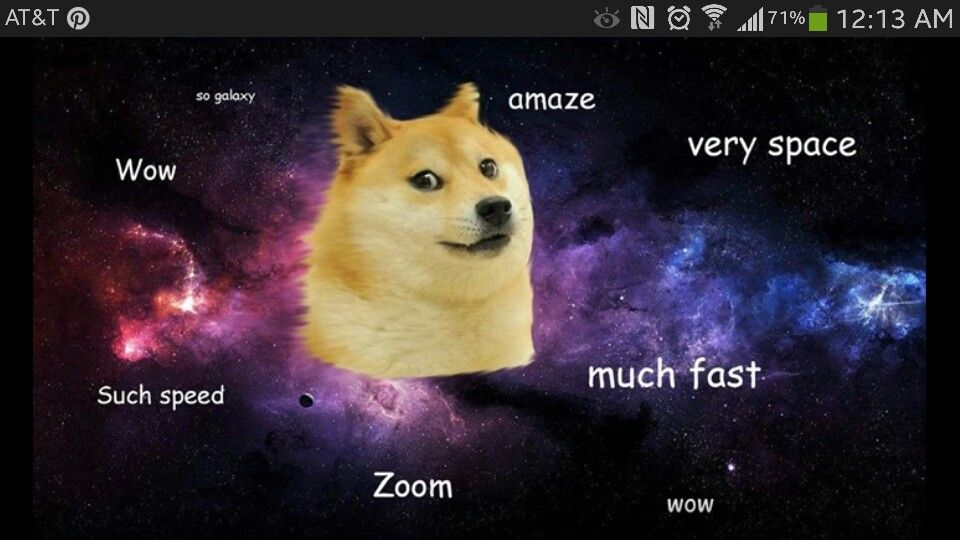 45 Funny Zoom Backgrounds To Try Rn Because We All Need A Laugh Woman Meme Cat Memes Best Memes