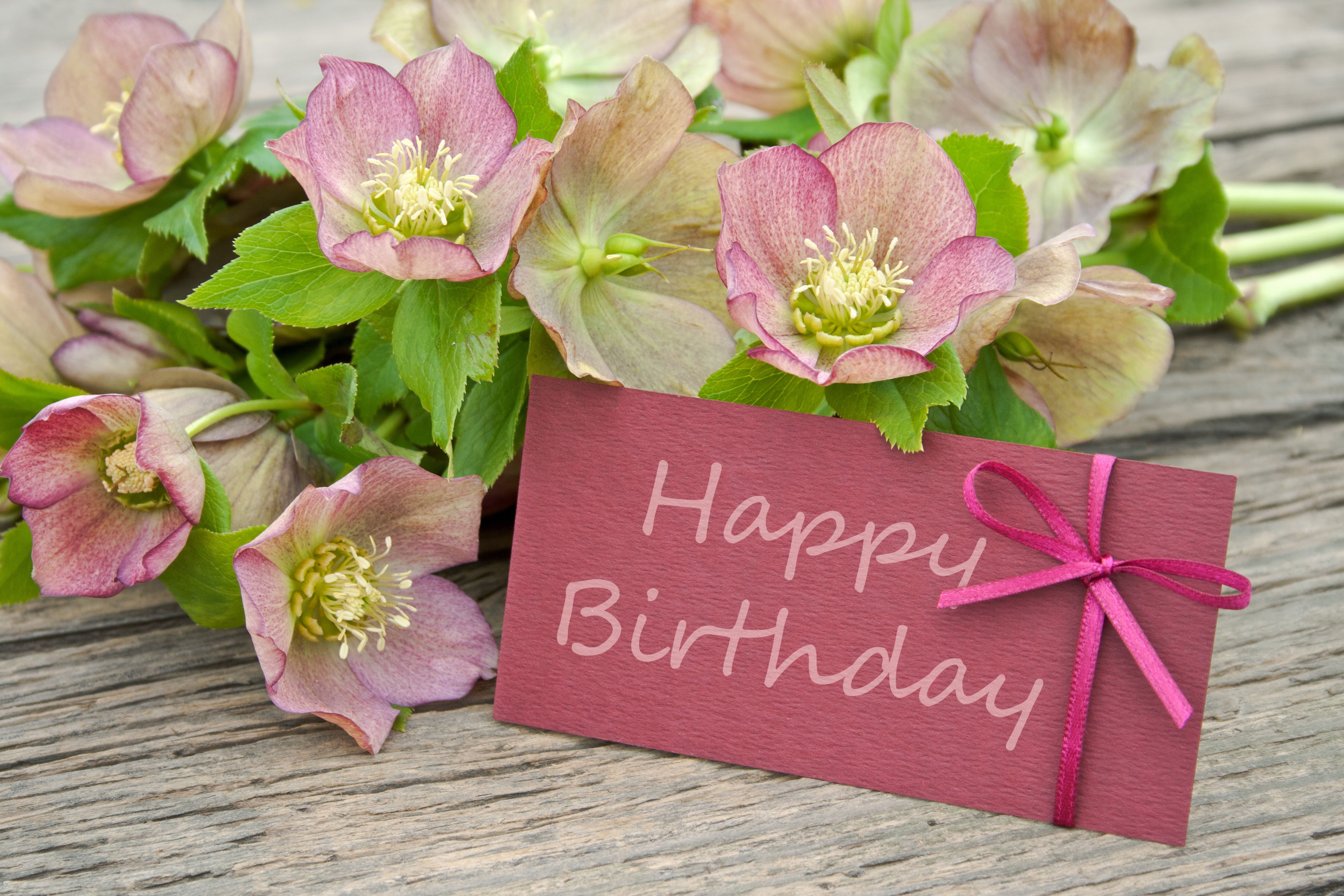 Happy Birthday Pics With Flowers Carte joyeux