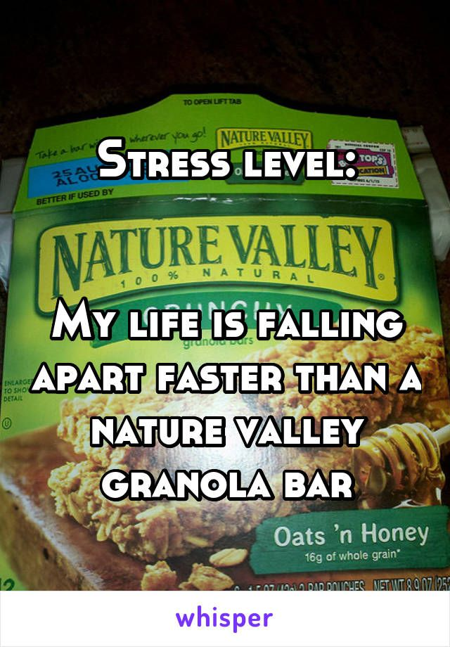 Stress Level My Life Is Falling Apart Faster Than A Nature Valley