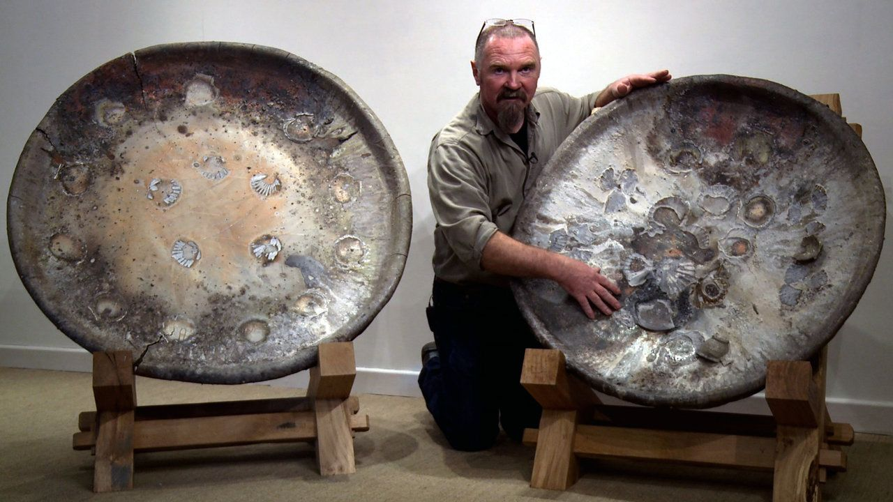 "Largest dishes Nic Collins has ever made!. They only just squeezed into Nic Collins new anagama kiln (a Japanese term meaning ""cave kiln"") w..."