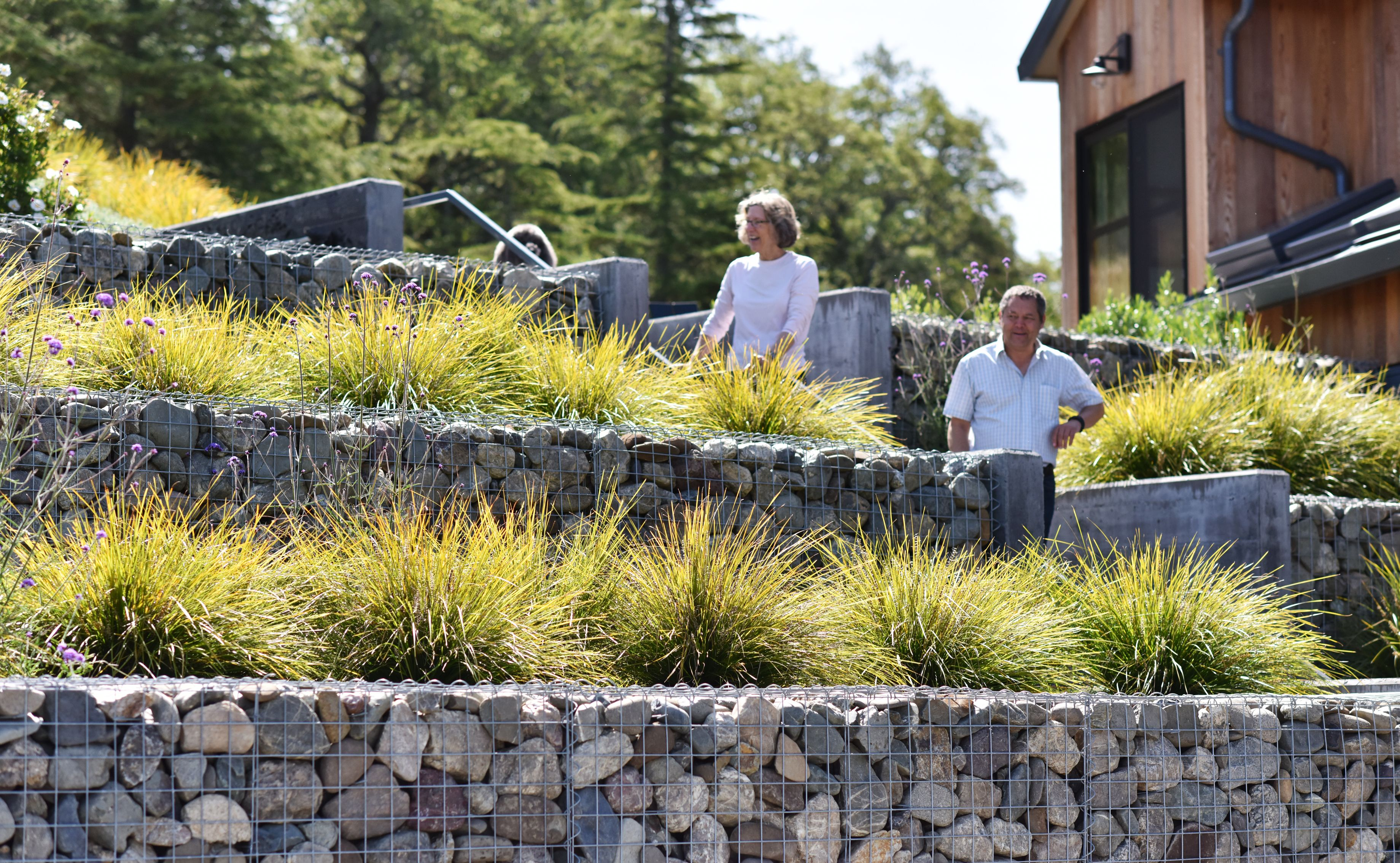 Gabion Wall Retaining Wall Planting Landscape Architecture Farm House Modern Landscaping Retaining Walls Lake Landscaping Hillside Landscaping