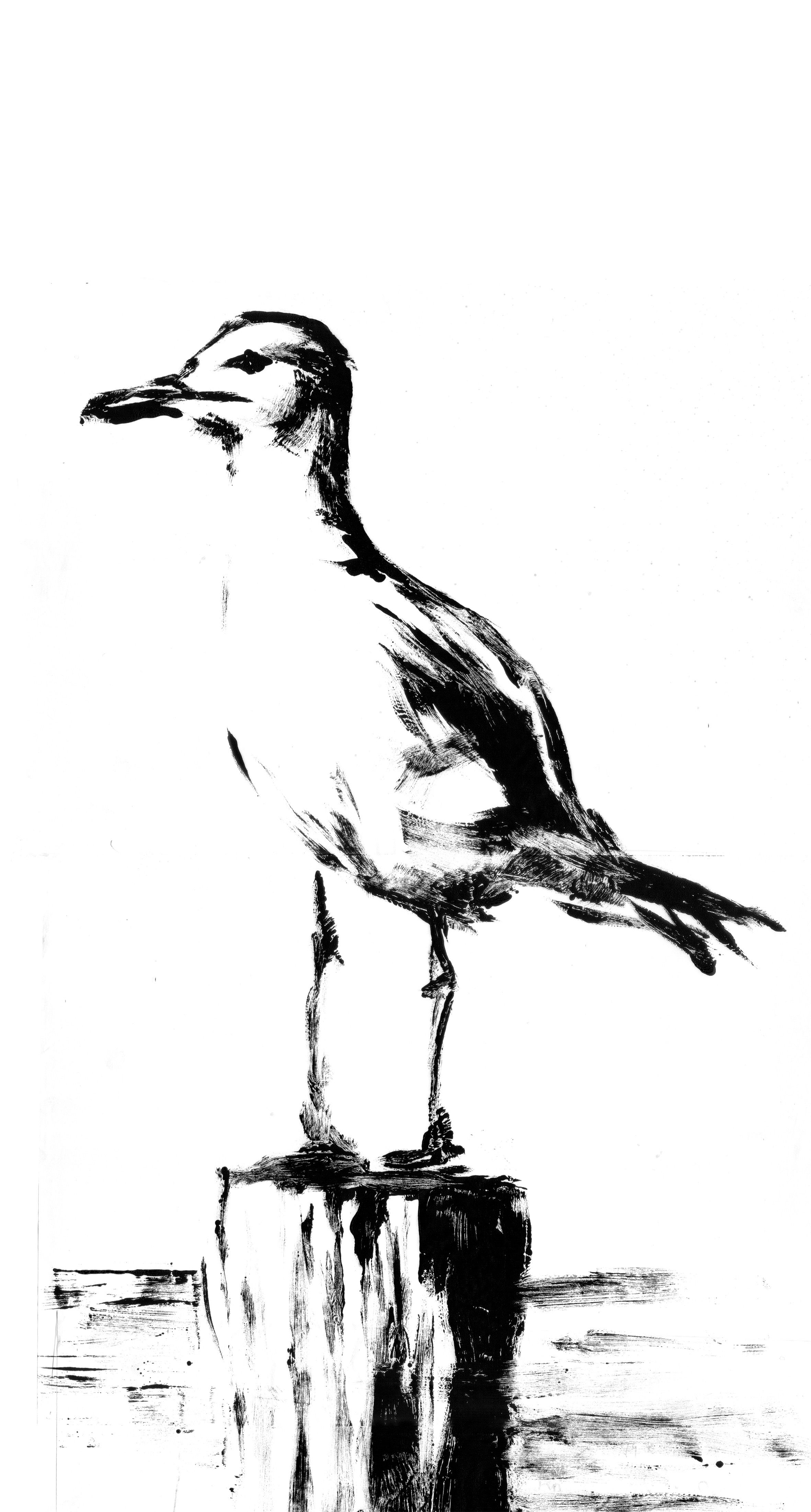 printoctober thedailysketch seagull monoprint 15 mins 241013