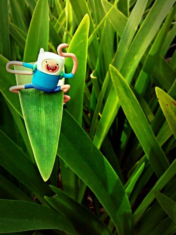 Adventure Time Toy Photography Finn