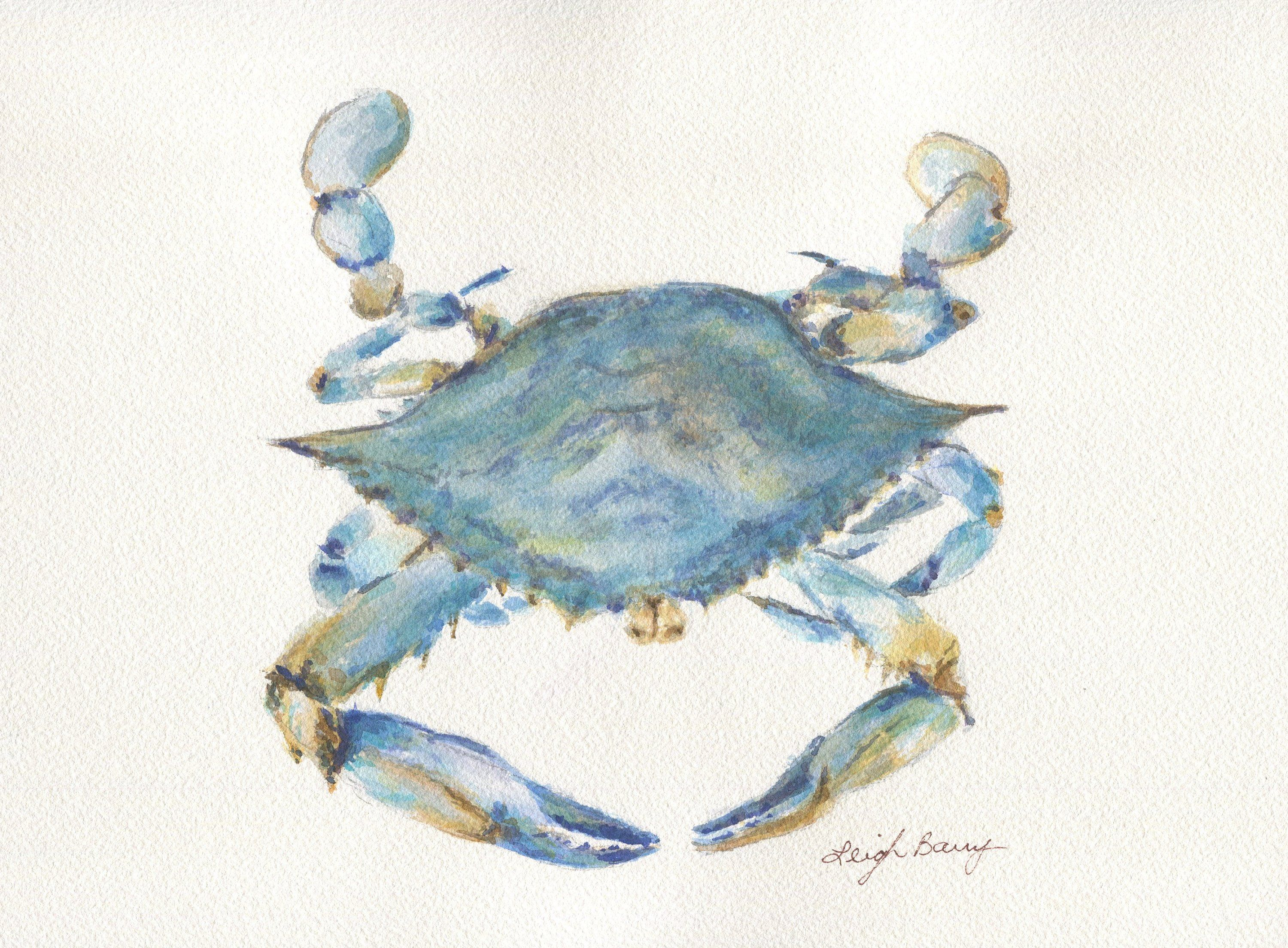 Blue Crab Watercolor Print Watercolor Painting Framed Art Print