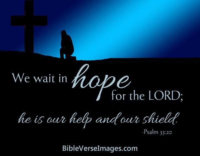 Psalmi 91,Psalm 91 RMNN;ESV - Psalmul 91 - Cel ce stă sub ocrotirea - Bible Gateway