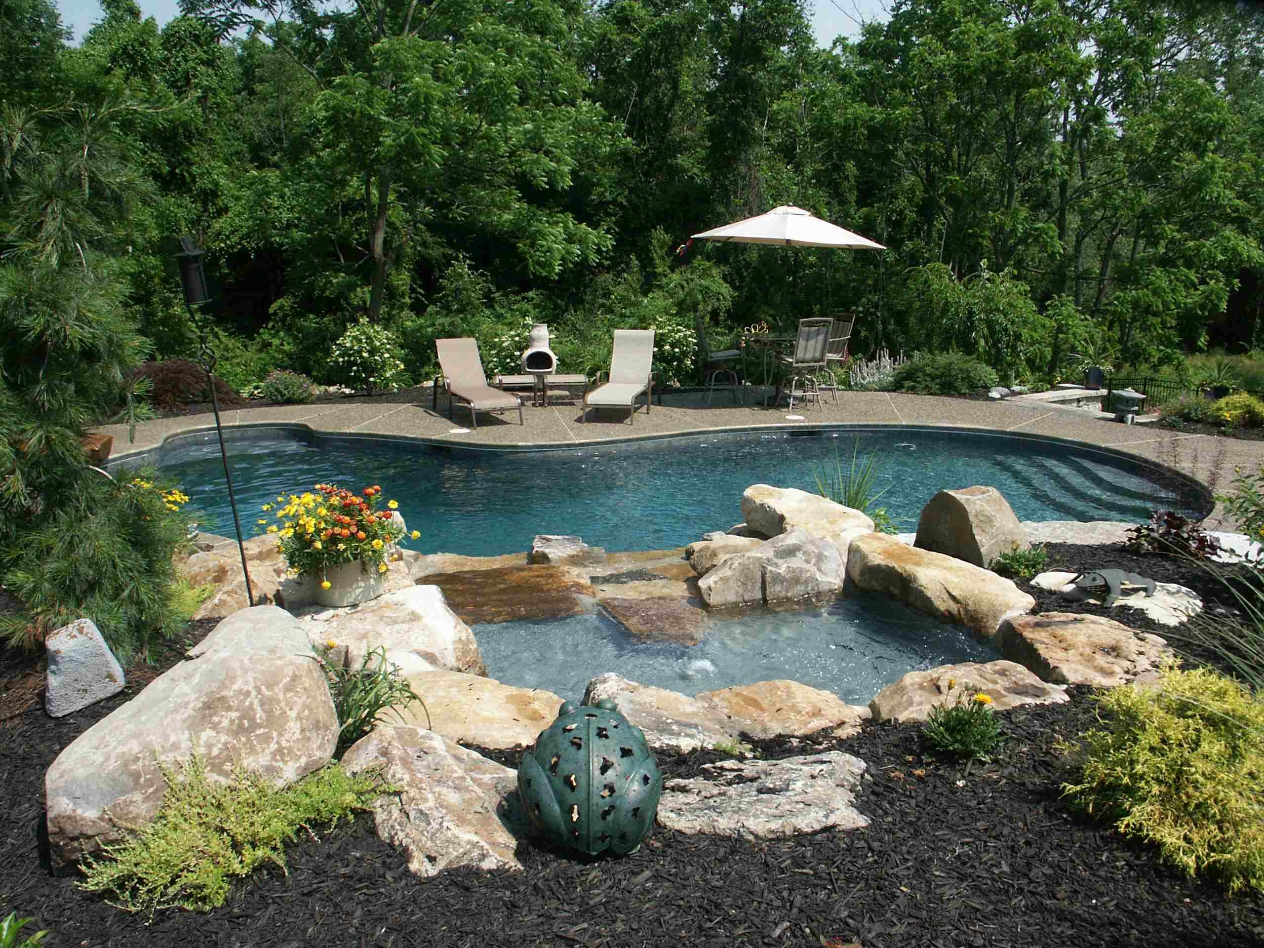 Free Form In Ground Gunite Plaster Concrete Pool Natural Boulder Water Feature Exposed