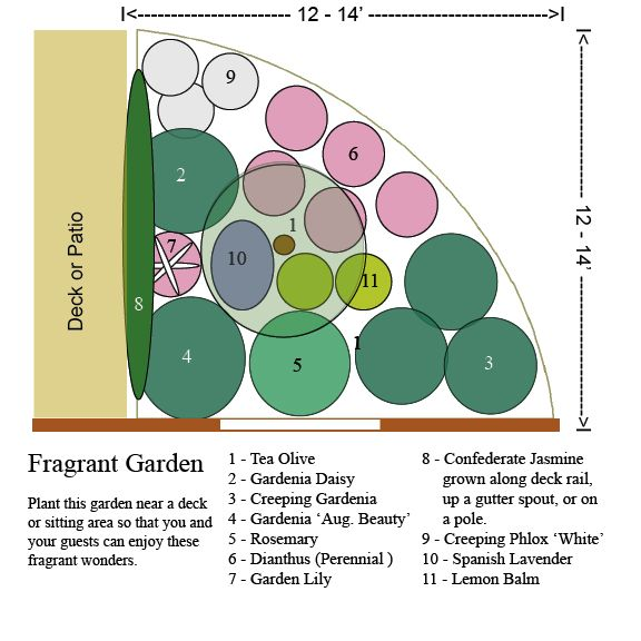 Fragrant Garden Design Garden Design Layout Landscaping Fragrant Garden Garden Design Layout