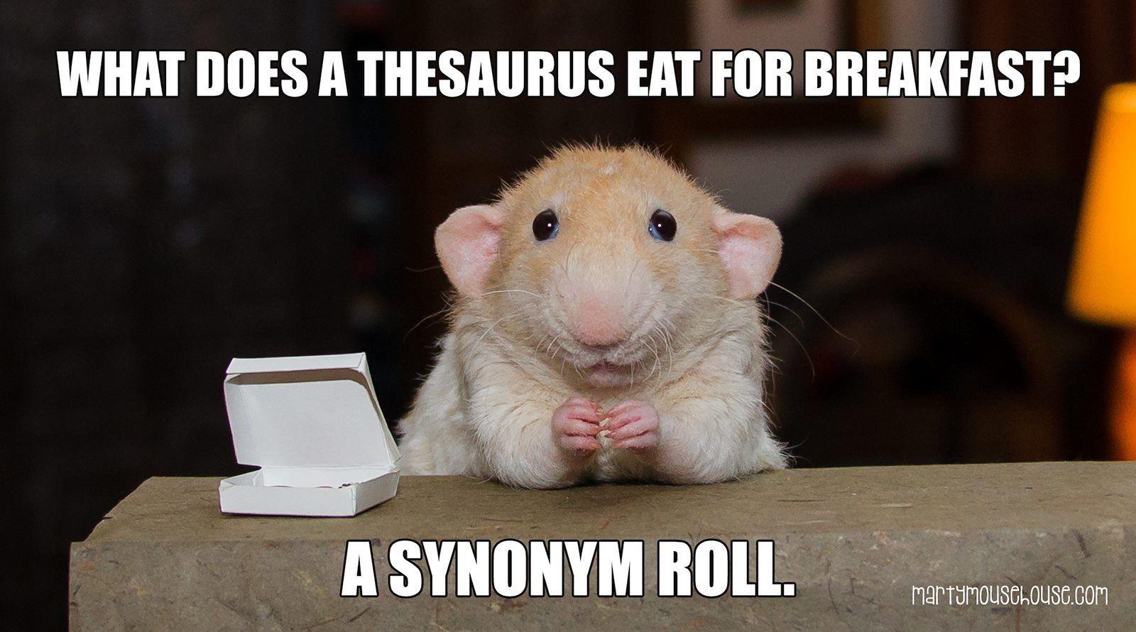 Little Kid Thesaurus