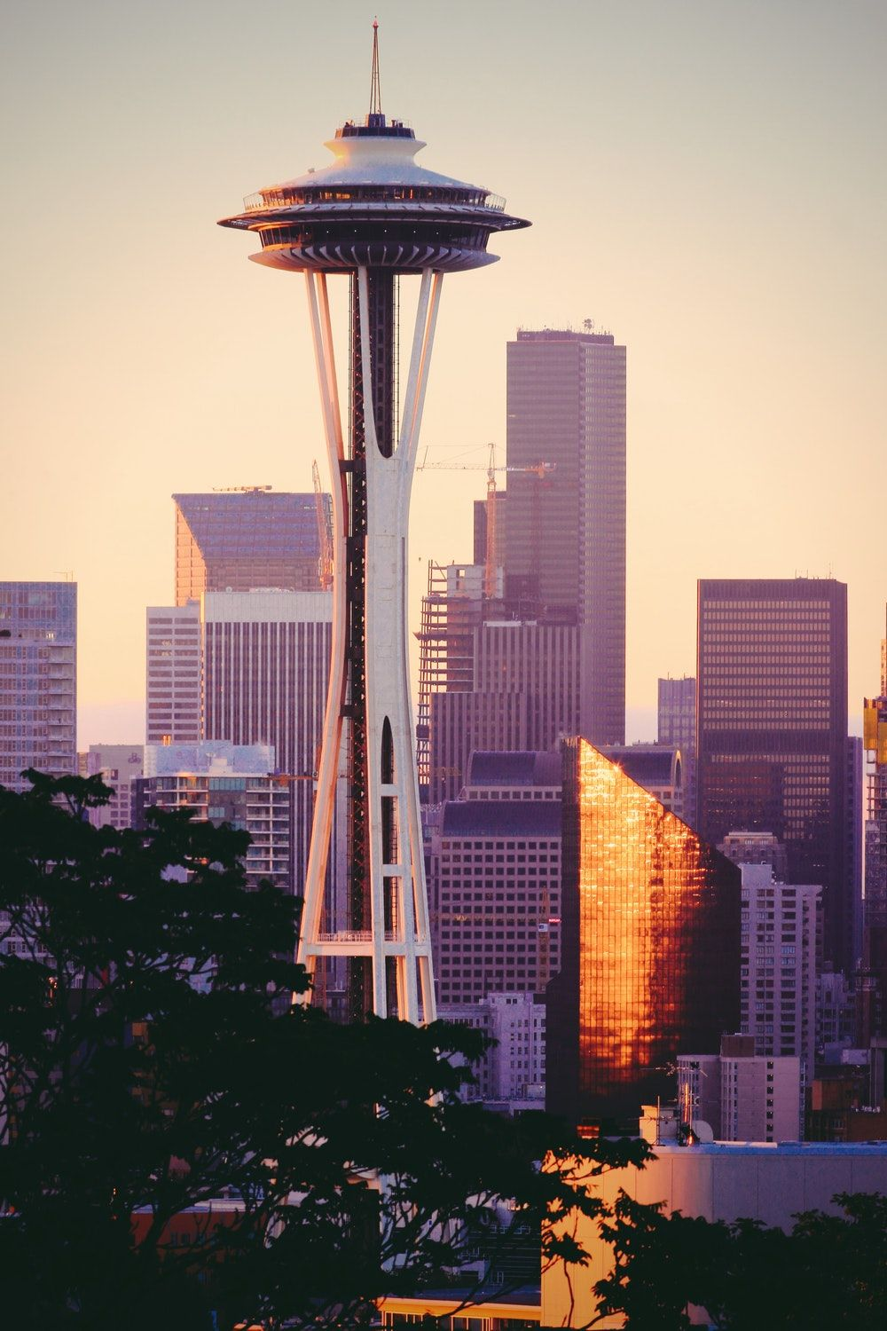 Stunning Seattle Pictures Download Free Images On Unsplash Seattle Pictures Seattle Travel Cool Places To Visit