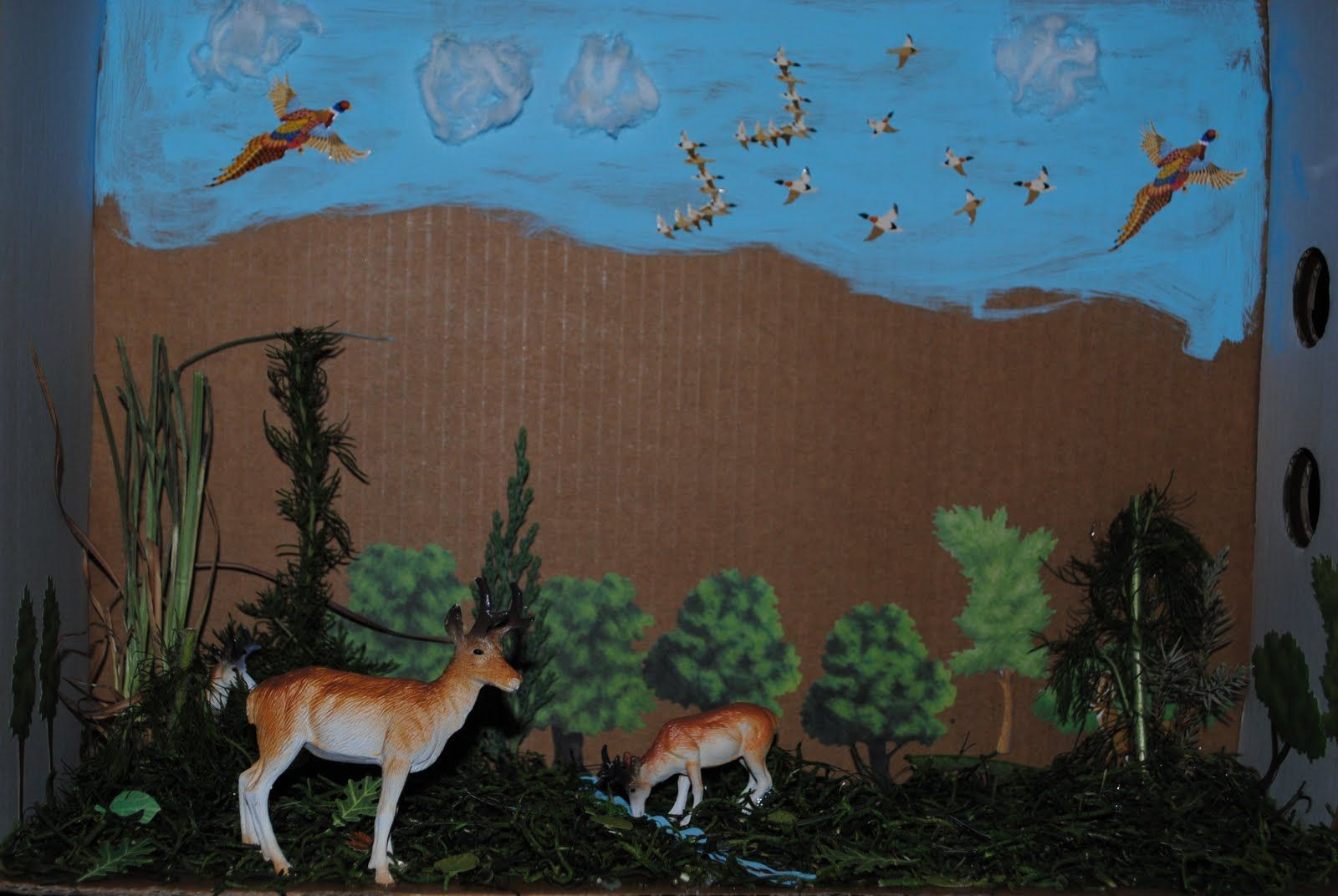 Animal Diorama Shoebox