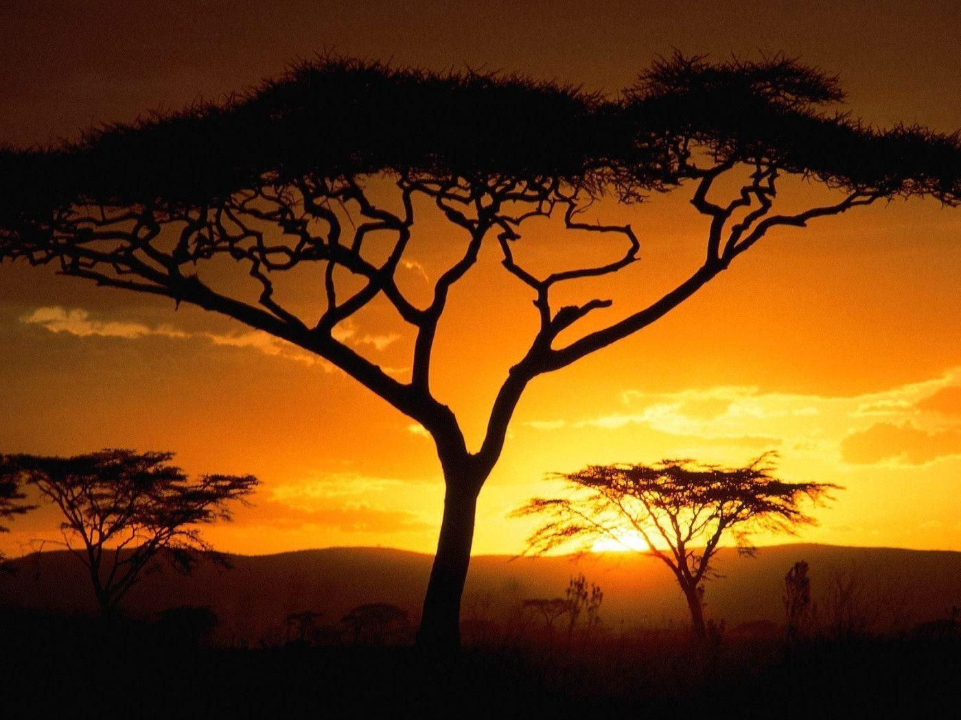 Africa Sunset Wallpapers High Definition Africa Sunset