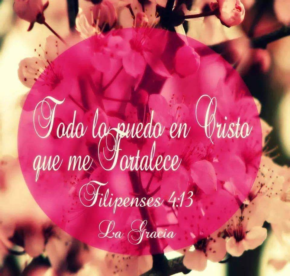 Filipenses 4 13 La Palabra De Dios Transforma Pinterest La  # Muebles Filipenses
