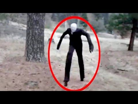 Mysterious Creatures Caught On Camera Spotted In Real Life  You