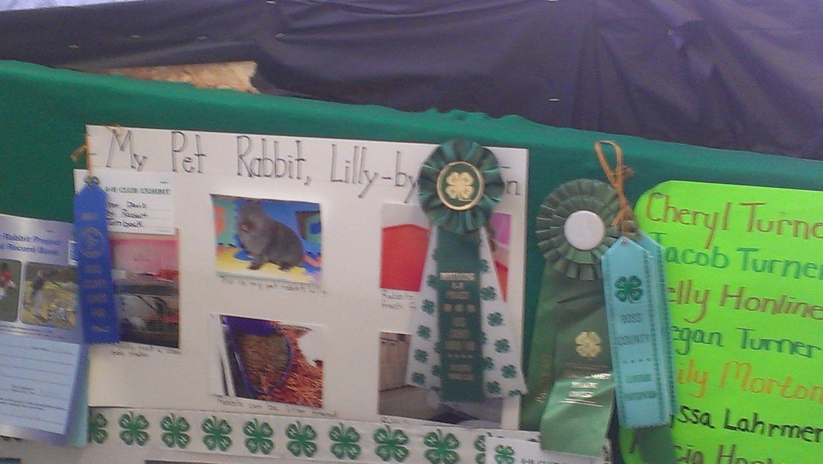 4h Pet Poster