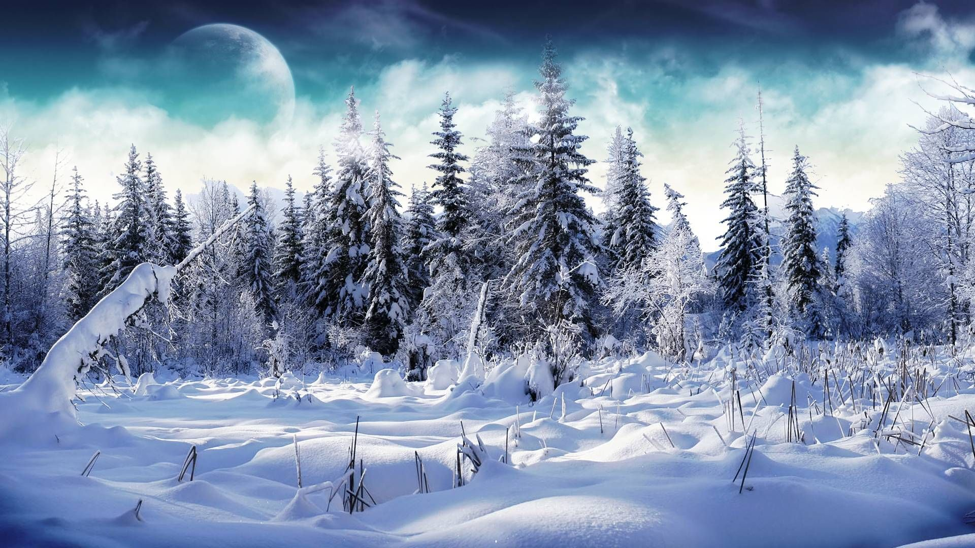 Winter Wallpapers Full HD Group (88 )