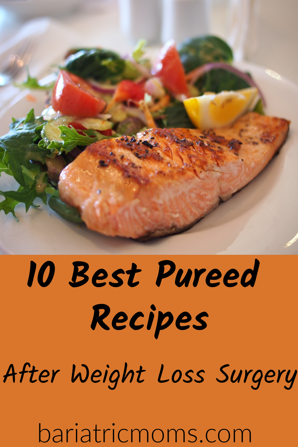 The 10 Best Pureed/Soft Food recipes After Bariatric