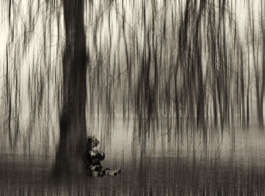 Safely under the weeping willow by Kuki Walsch # ...Weeping Willow Black And White Tattoo