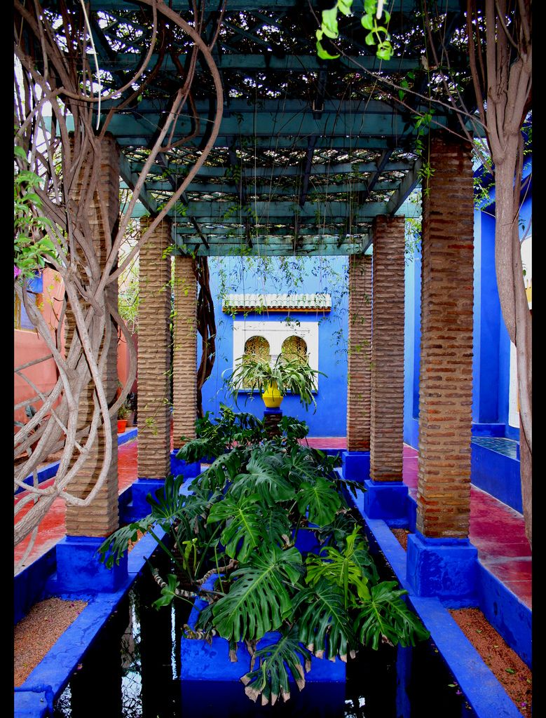 Jardin majorelle marrakech colors in garden for Jardin ysl marrakech