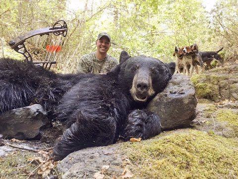 Josh Bowmar SPEARS GIANT BEAR On The Ground! EPIC HUNT! - YouTube