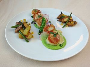 My culinary creations seared scallops lemon and asparagus seared scallops w pea puree lemon beurre blanc by chef david buchanan chefs resources fandeluxe Gallery