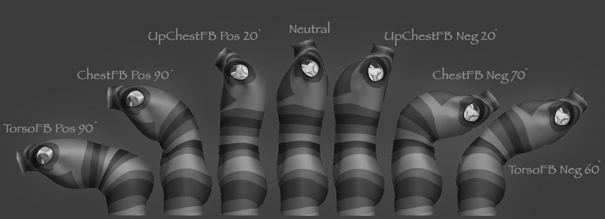 Pin By Olga Lookyanova On Animrigs Pinterest Anatomy Animation