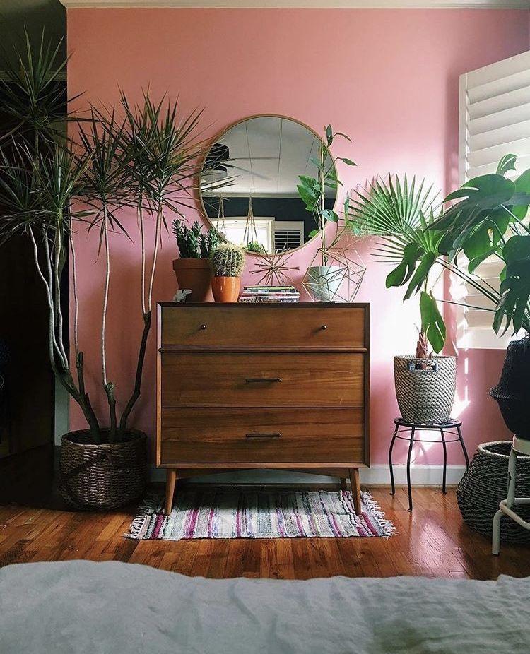 Zimmer Mit Pinker Wand. Einrichtung Mit Dunklem Holz Und Vielen Pflanzen.