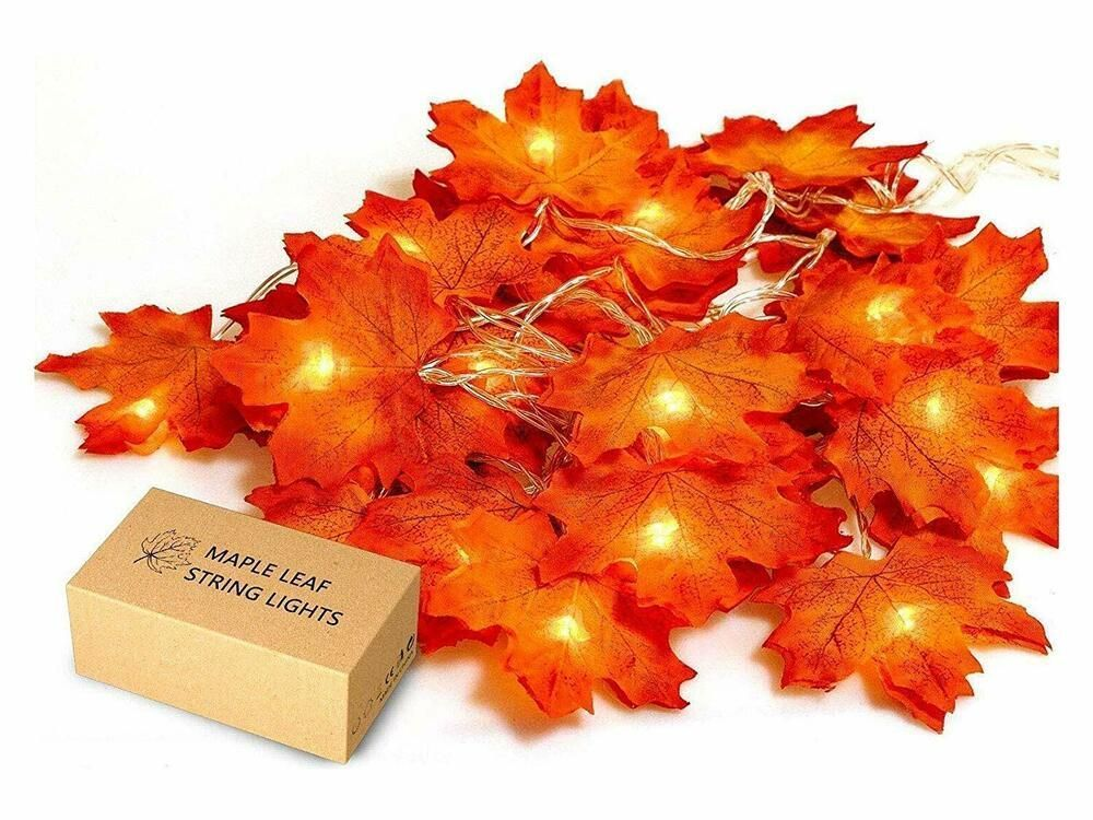 Fall Maple Leaf Garland 20 LED 8.2 Feet Waterproof 3AA Battery,for Thanksgiving. #JamBer #leafgarland Fall Maple Leaf Garland 20 LED 8.2 Feet Waterproof 3AA Battery,for Thanksgiving. #JamBer #leafgarland Fall Maple Leaf Garland 20 LED 8.2 Feet Waterproof 3AA Battery,for Thanksgiving. #JamBer #leafgarland Fall Maple Leaf Garland 20 LED 8.2 Feet Waterproof 3AA Battery,for Thanksgiving. #JamBer #leafgarland