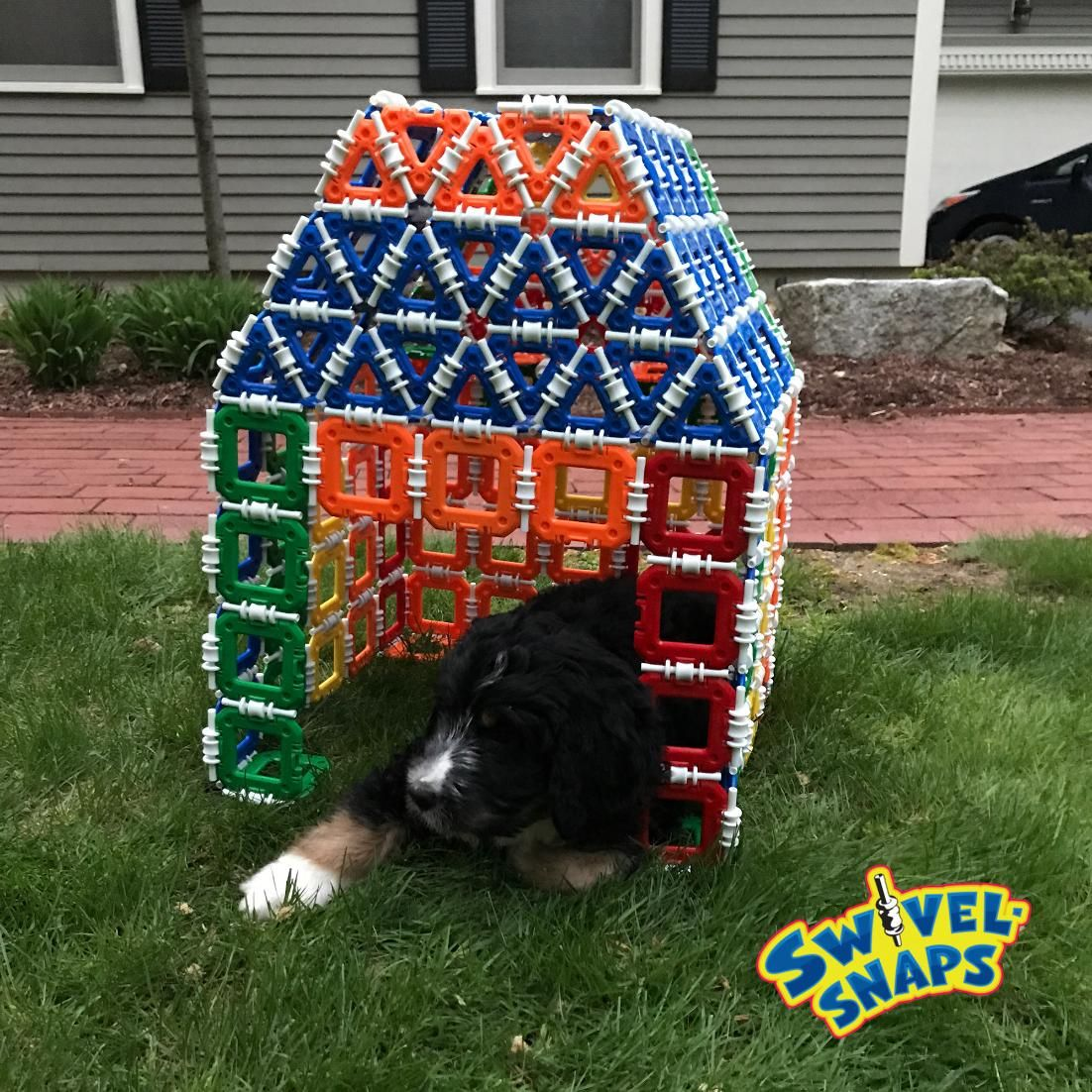 Our K-9 friends love Swivel-Snaps too! #HomeSweetHome #toys #STEM