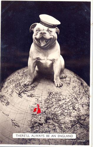 Wwii Bamford Bulldog Postcard Bulldog Postcard British Bulldog